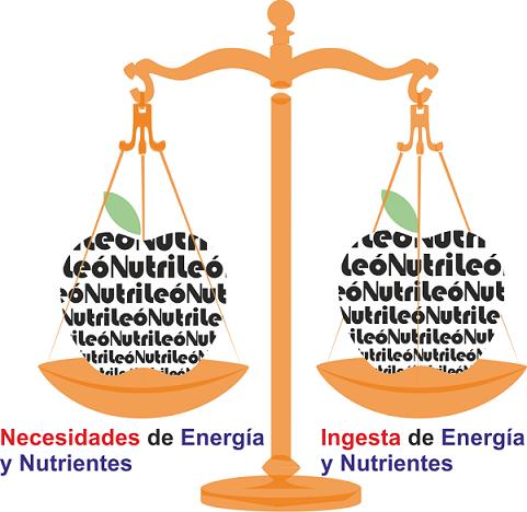¿Qué es una dieta equilibrada?